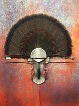 turkey fan.jpg
