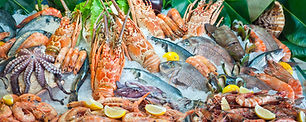 seafood variety .jpg