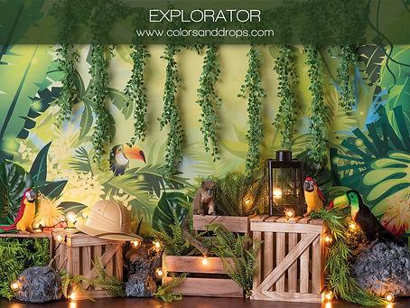 explorator-sol-brownie.jpg