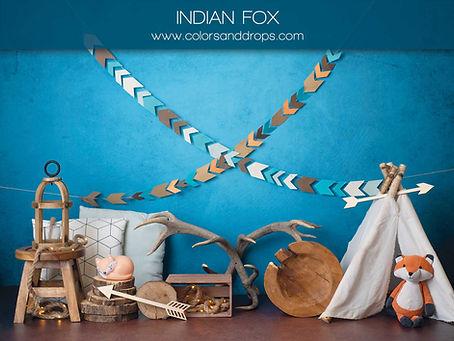 indian-fox.jpg