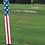 Thumbnail: The Stars&Stripes