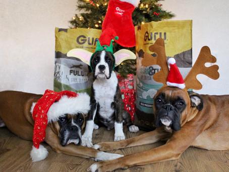 Charlotte's Christmas Gift Guide