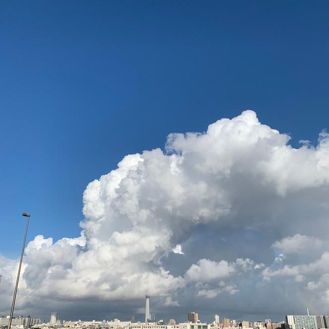 東京スカイツリーと積乱雲と虹