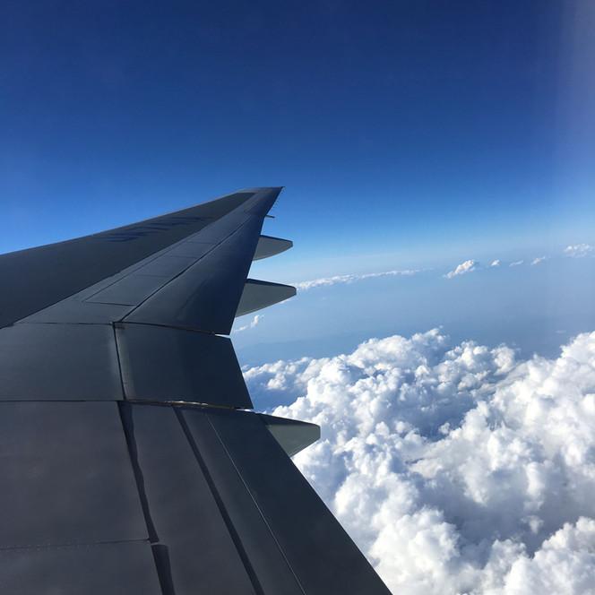 雲の上の青、地上の金色