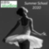 Summer School 2020 a.png