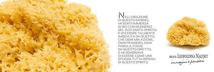 spugna_leopoldina_segnalibri-1.jpg