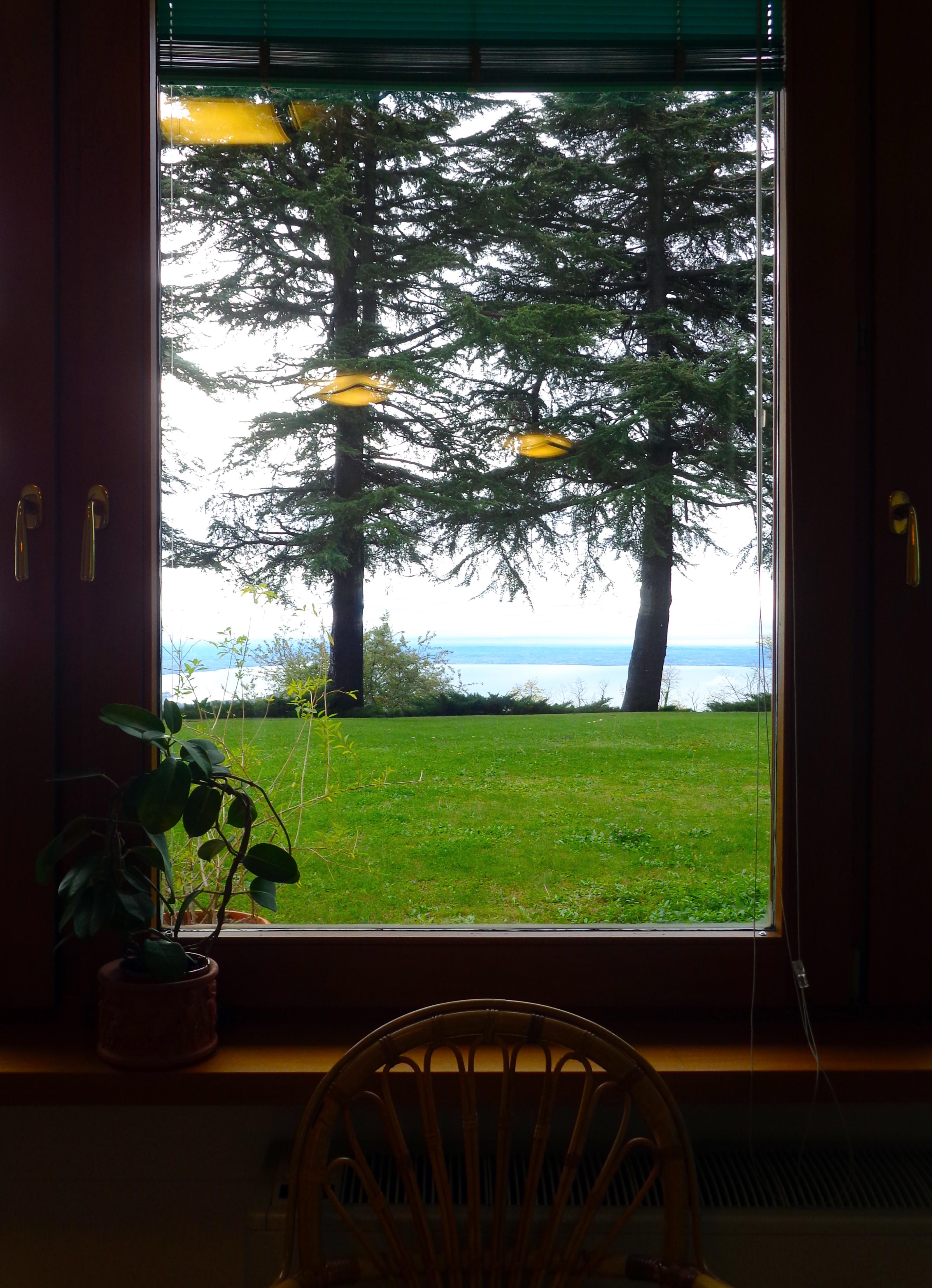 dalla finestra22
