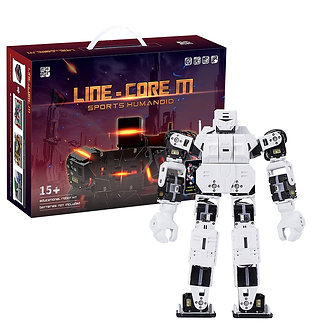 27cm My Robot Time LINE-Core M Graphical Programmable Humanoid Robot Educational