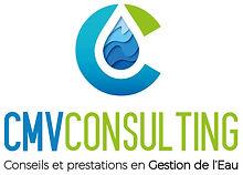 CMV CONSULTING Q.jpg