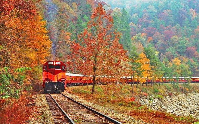great-smoky-mountains-railroad-1021x640.