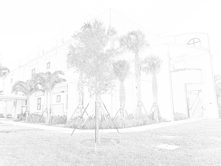 Building_Sketch.png