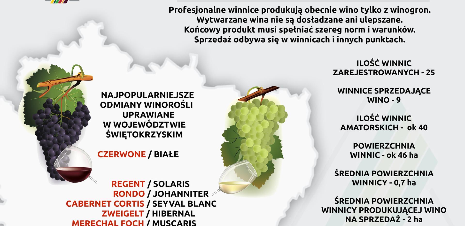 Historia winiarstwa