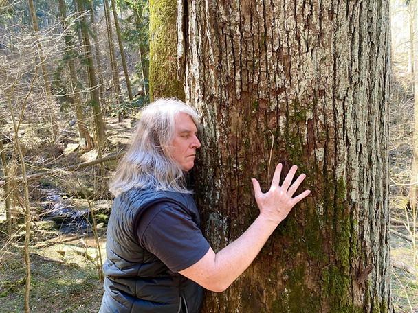 Stromy nás nabíjí úžasnou energií