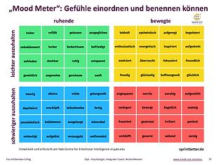 MoodMeter_PsychologinNicoleMenten_Mai_20