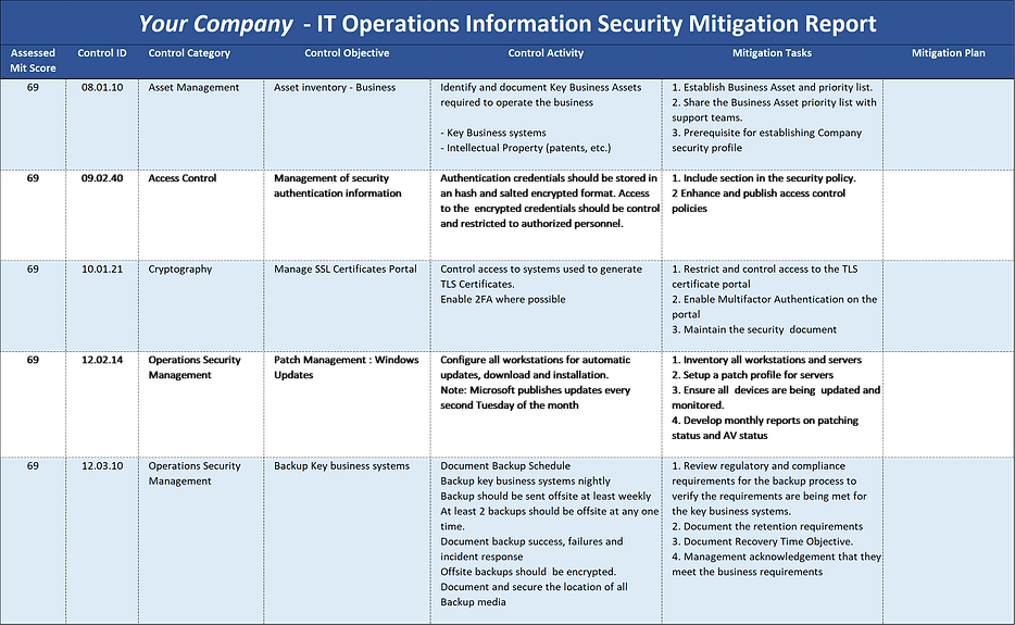 Data Perceptions IT Operation Information Security Mitigation Report