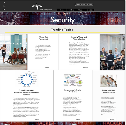Data Perceptions Security Consulting Services