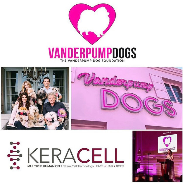 KERACELL teams up with VANDERPUMP DOG FOUNDATION!!