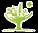ecole era huile essentielle kinem.ch