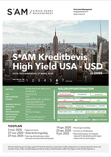 SAM.HighYield.USA.2005 - USD 2005.jpg
