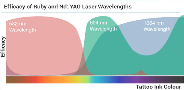 Efficacy of Ruby and ND: YAG Laser Wavelengths
