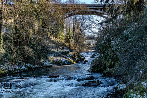 Tumwater Falls 6_.jpg