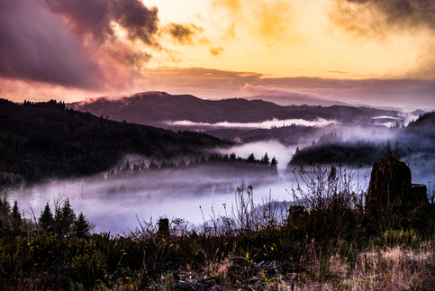 Fog in the Valley.jpg