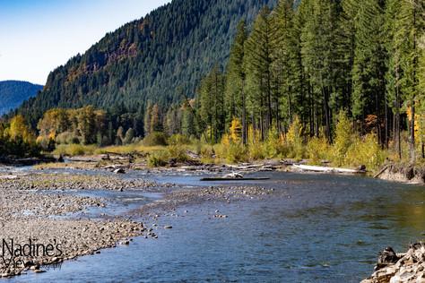 Cispus River 1 no WM_.jpg