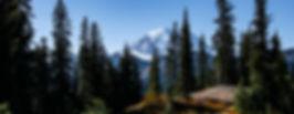 Mount Rainier b.jpg