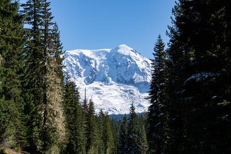 Mt Adams 1 no WM_.jpg