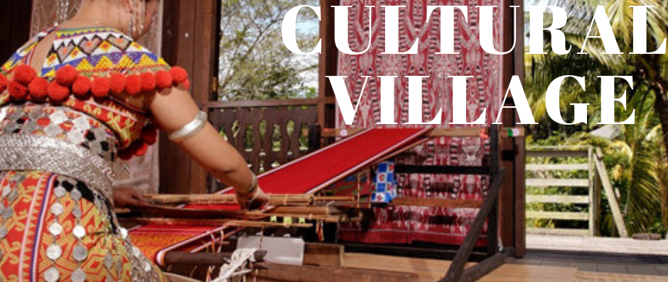 Sarawak Cultural Village Package