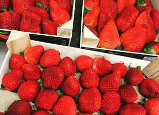 Les premières fraises sont arrivées !