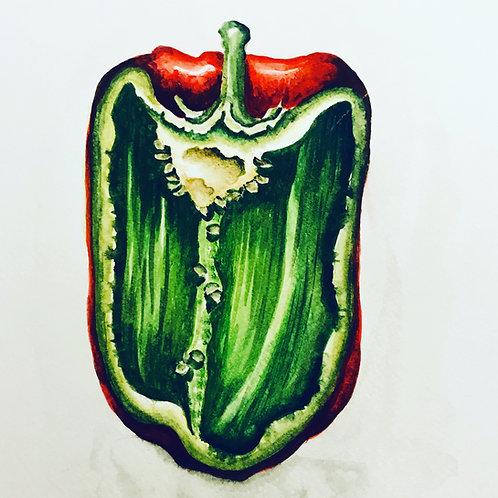 red pepper watercolour original and print buy sale