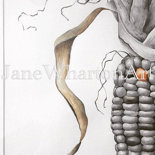 Watercolour Corn on the Cob Print