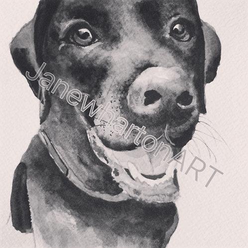 Dog portraits painting your dog cat pet watercolour