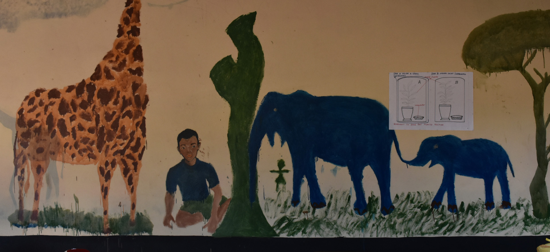 Zambia Twabuka School Wall