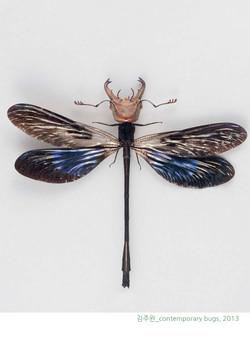 김주완_contemporary bugs