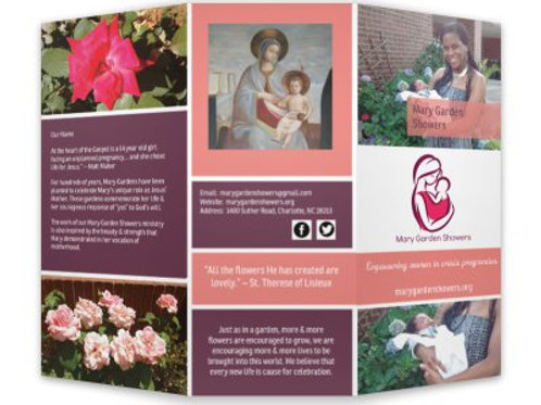 MGS Brochure - 20 ct. (English)