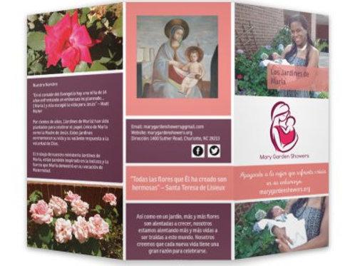 MGS Brochure - 20 ct. (Spanish)
