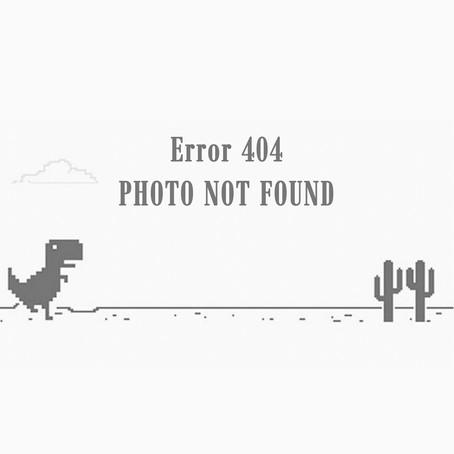 Un mundo sin fotos