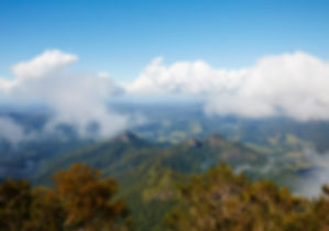 view from mount warning