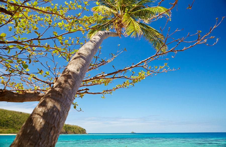 Mantaray Island