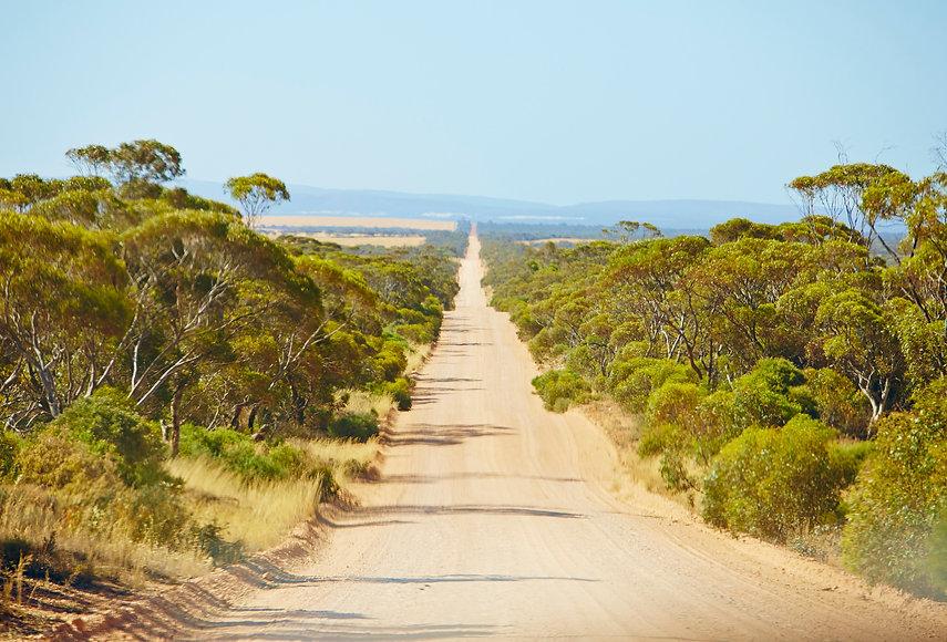Lamb Australia
