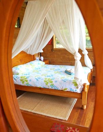 nimbin accommodation