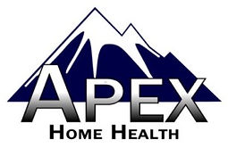Logo_Apex_Main - Copy1.jpg