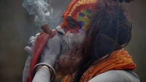 Himachal Pradesh plans to legalize cannabis civilization