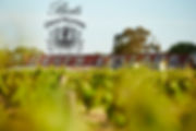 Bests Wines.jpg