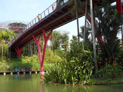 Piknik 40 fokban - Szingapúr