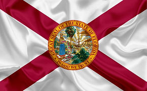 FLORIDA FLAG ALONE METALLIC.jpg