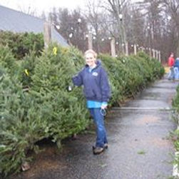 Trinity Church tree sale.jpg