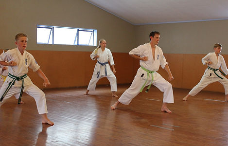 Seido Karate Te Awamutu Class Info